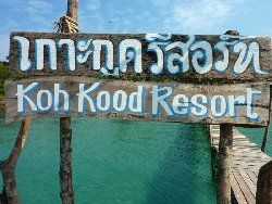 Remember this sign on our pier, so you know where to get off the speedboat