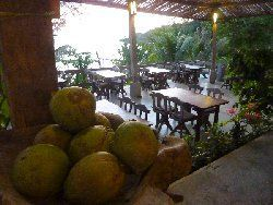 fresh coconuts in our restaurant on koh kood