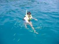 Feeding the fish on a snorkeling trip