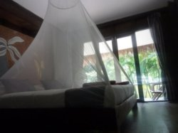 Well protected under the mosquito nets